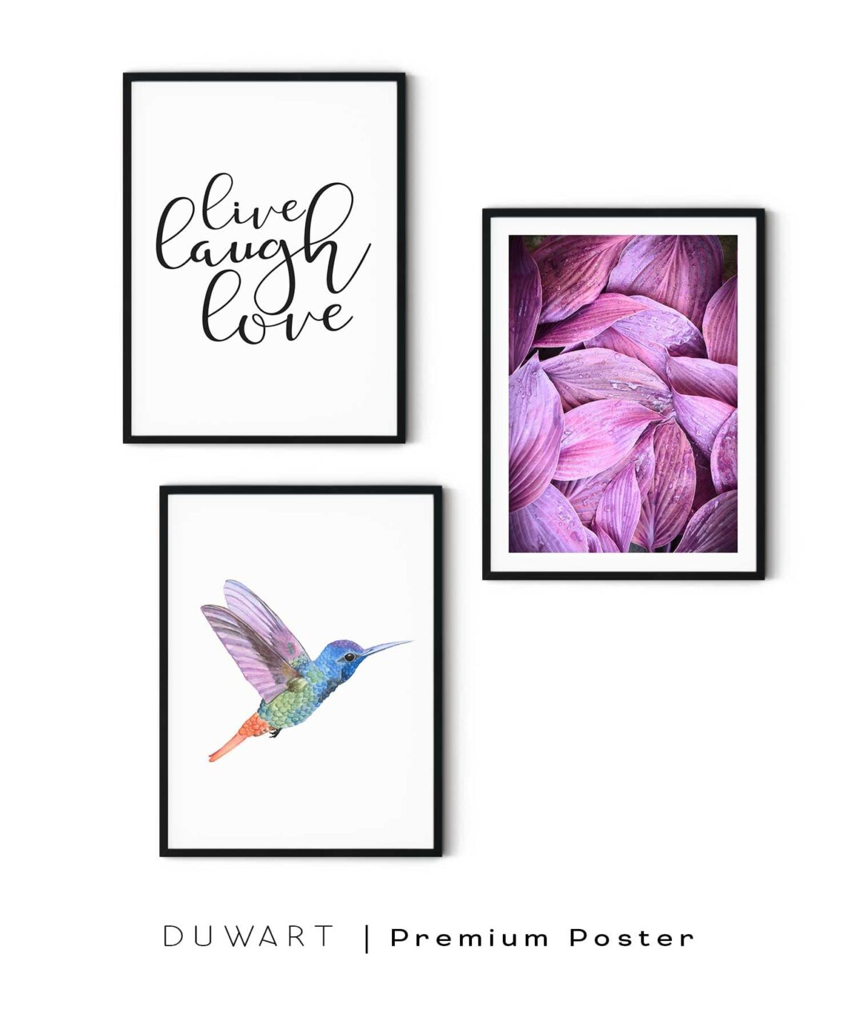 Hummingbird-Poster-Set WB