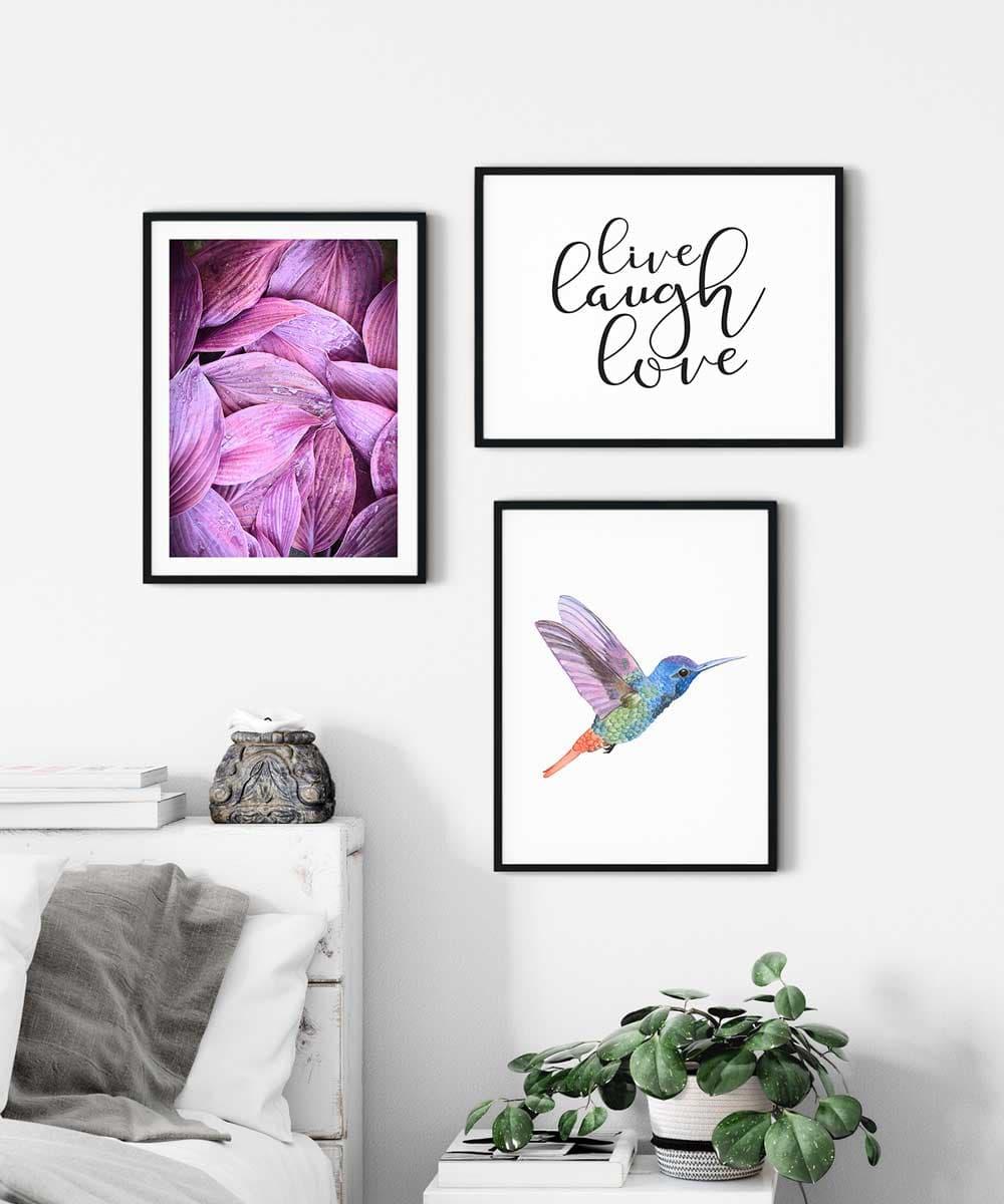 Hummingbird-Poster-Set-on-Wall-Black-Framed-Duwart