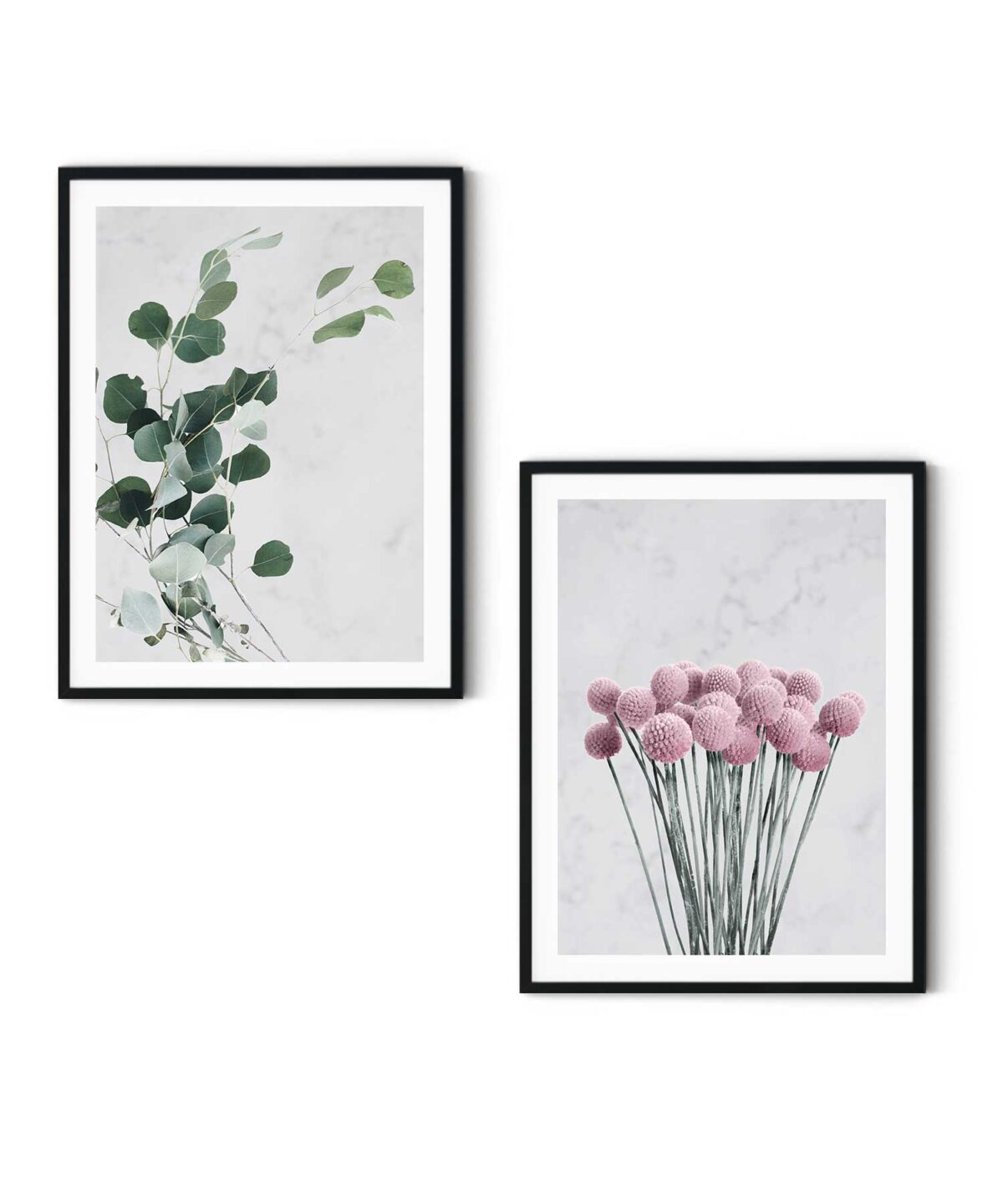 Eucalyptus-Poster-Set-White-Background-Duwart
