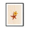 Starfishes-Soyut-Poster