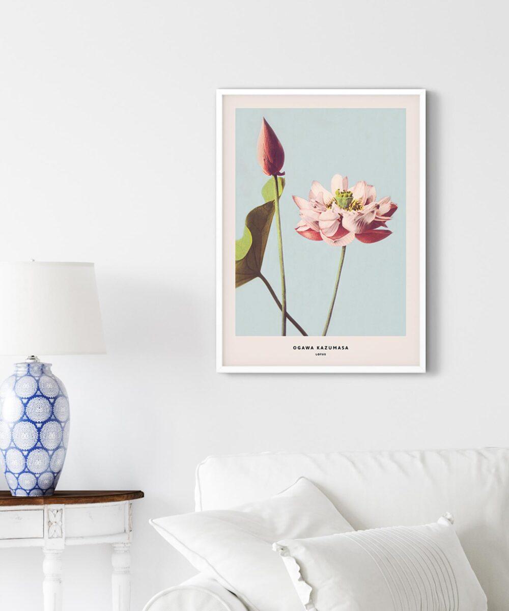 Ogawa-Kazumasa-Lotus-Poster-on-Livingroom-Wall-White-Framed-New-Duwart