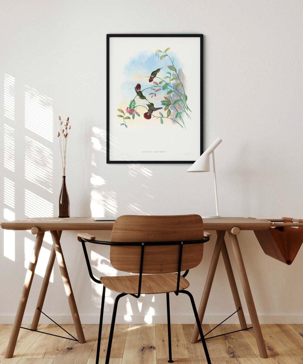 Festive-Coquette-Poster-Black-Framed-on-Wall-Duwart