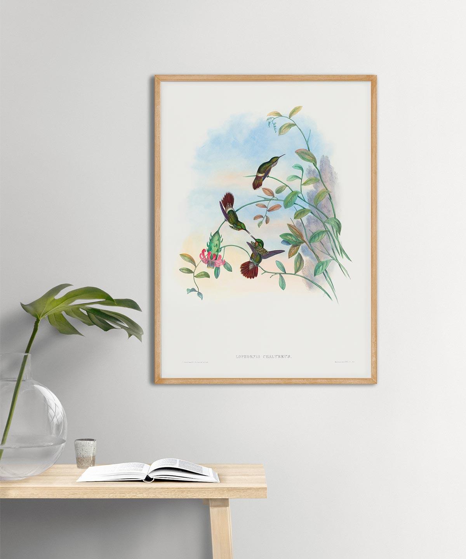 Festive-Coquette-Poster-Wooden-Frame-Duwart