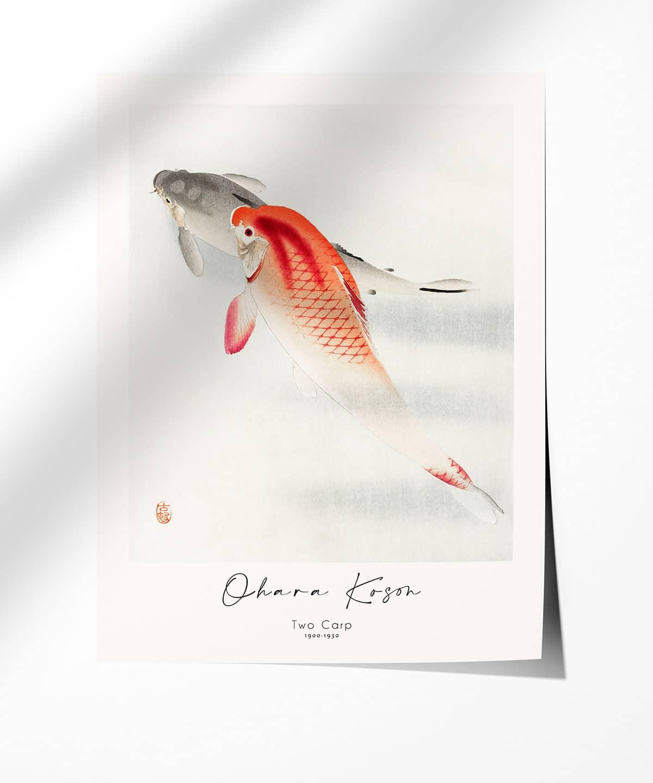 Ohara-Koson-Two-Carp-Poster-Photopaper-Duwart