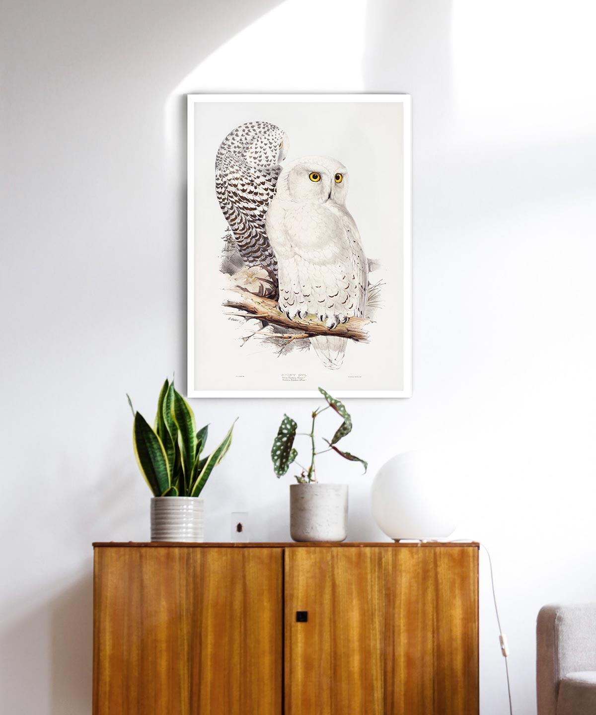 Snowy-Owl-Poster-White-Framed-Duwart